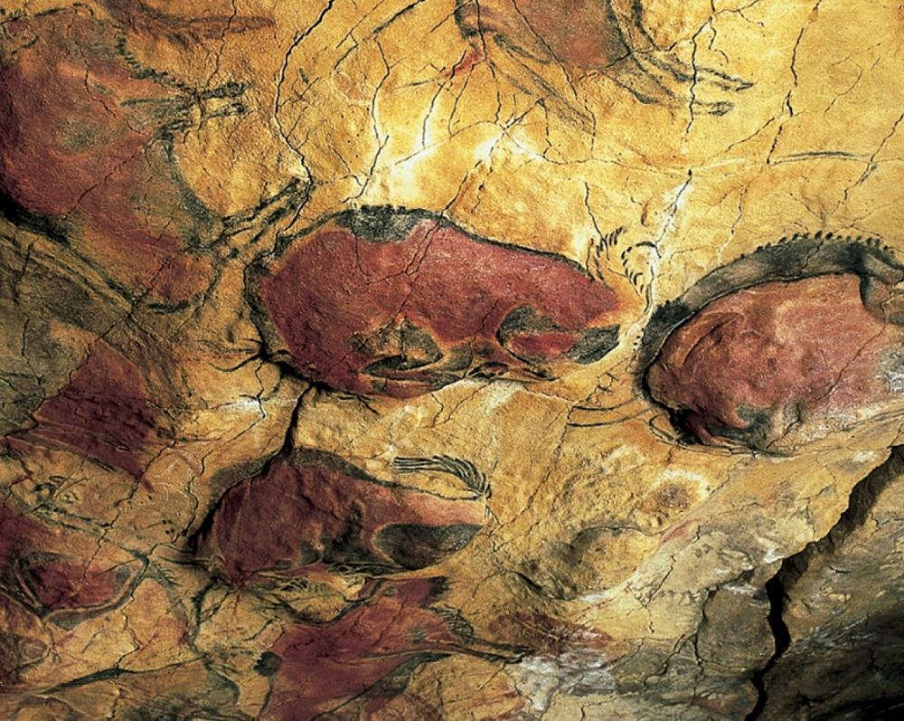 La Cueva y Museo de Altamira_8