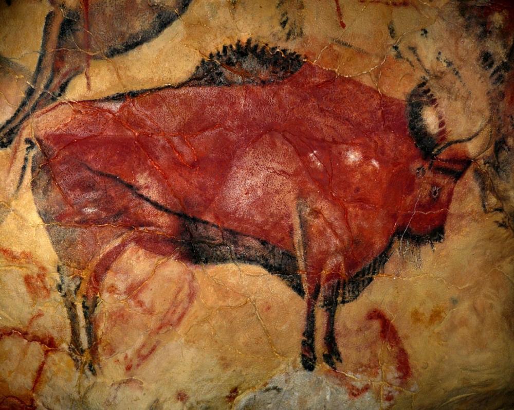 La Cueva y Museo de Altamira_25