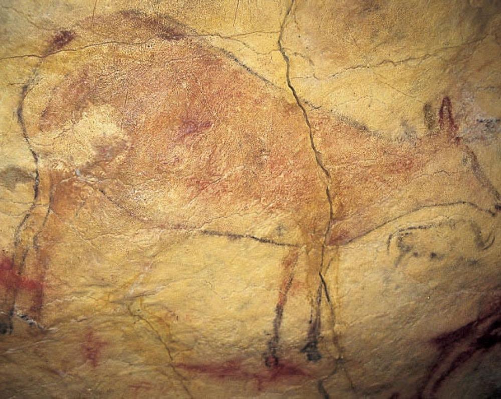 La Cueva y Museo de Altamira_31