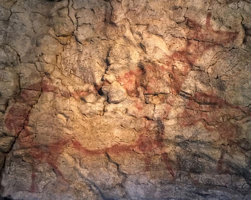 La Cueva y Museo de Altamira_34
