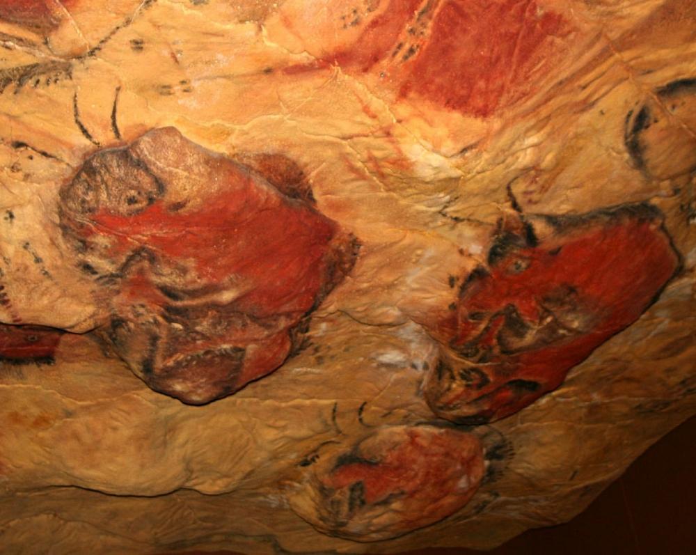 La Cueva y Museo de Altamira_29