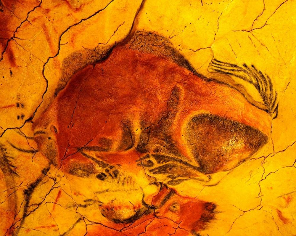 La Cueva y Museo de Altamira_27